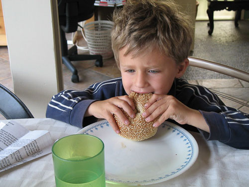 Boy eating a bagel like a sandwich, holding it in his hands.