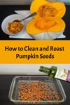 Steps showing how to clean pumpkin seeds and roast them